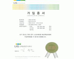 LIG保险单