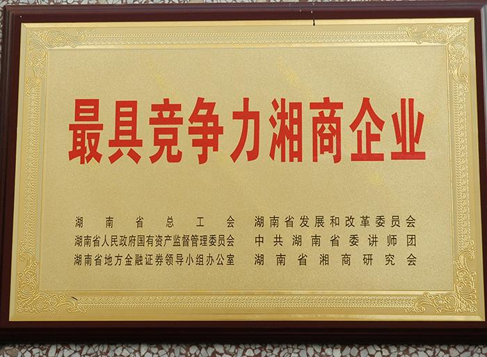 最具竞争力湘商企业