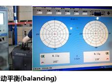 The rotor dynamic balance
