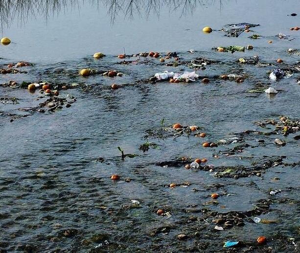 对我们影响至深的水污染有哪些种类?