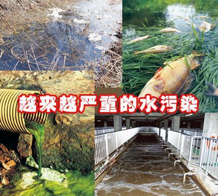 各路专家、名人谈如何看待水污染