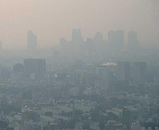 空气污染不仅有害健康还会让你变胖