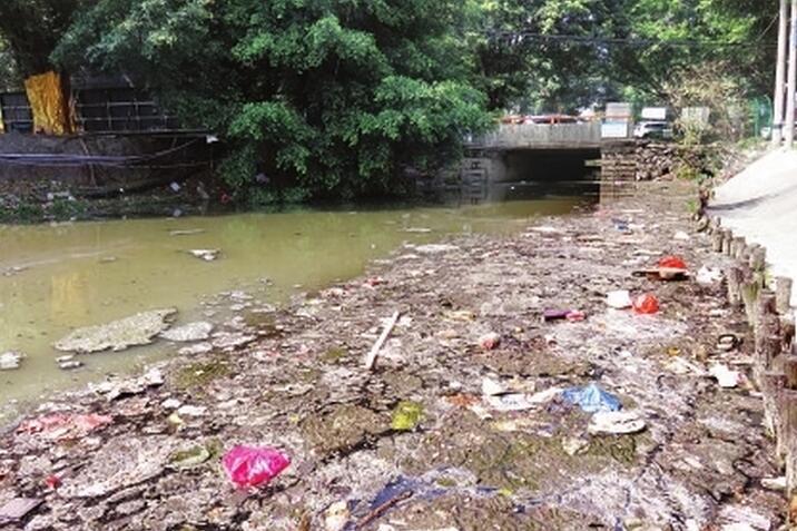 河道污染严重 污水直排垃圾多 清流成臭河 净水刻不容缓