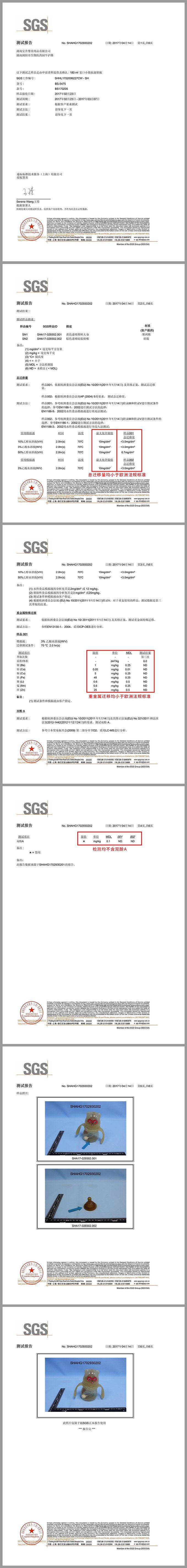 SGS检测报告完整版