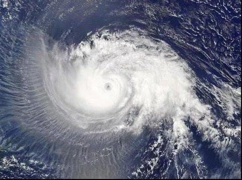 """台风""""山竹""""来袭 你家门窗够坚固吗?"""
