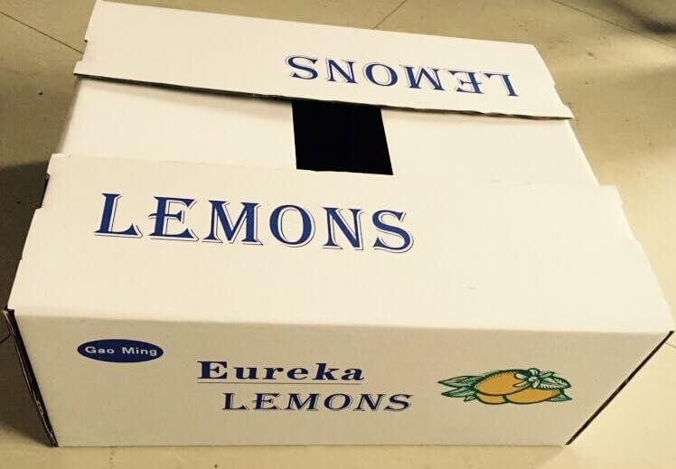 LEMONS箱