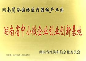 湖南省中小微企業創業創新基地