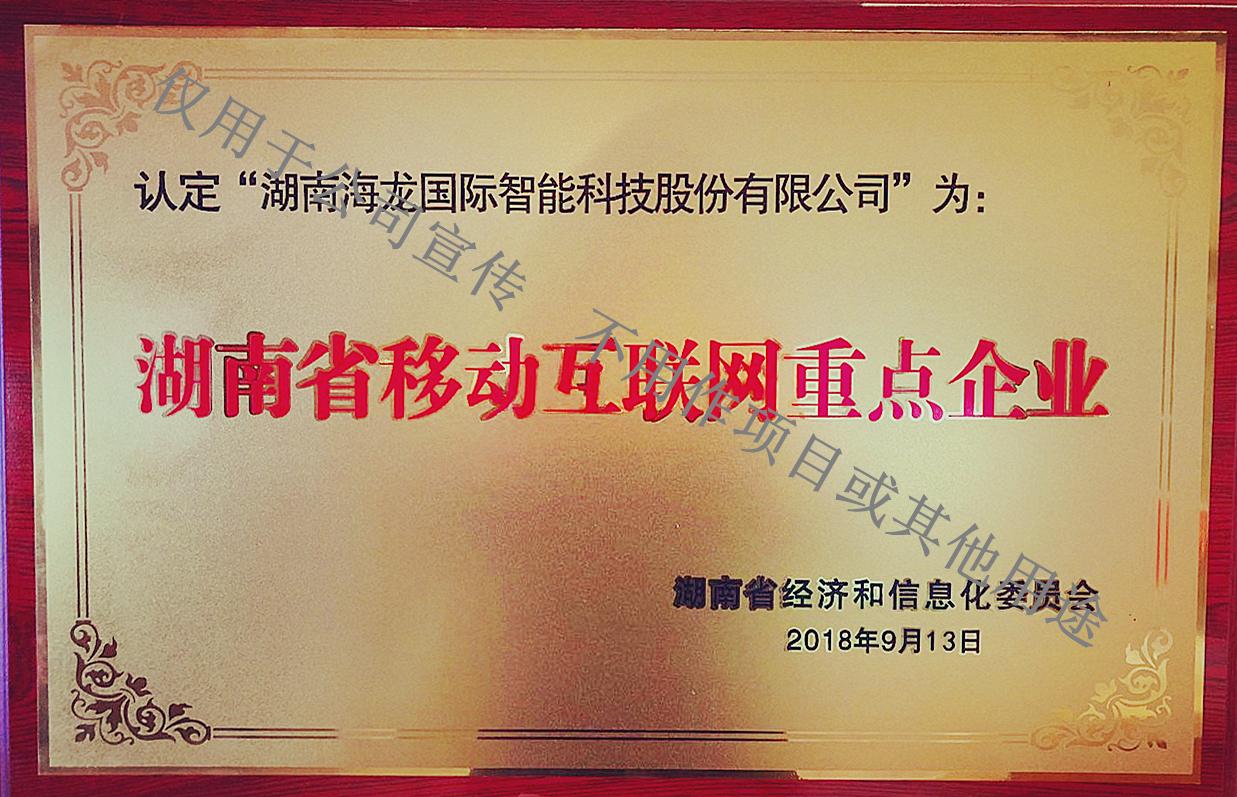 湖南省移动互联网重点企业