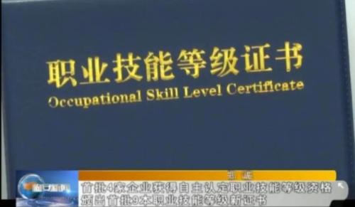 評價有載體 成長有通道 百萬勞動者取得職業技能等級證書